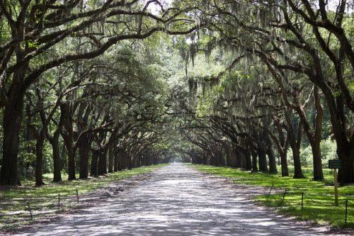 Ciudades poco conocidas de Estados Unidos. Savannah, Georgia