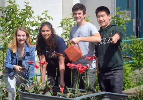 Defensa y cuidado por el medio ambiente. Activismo social en los colegios de Estados Unidos.